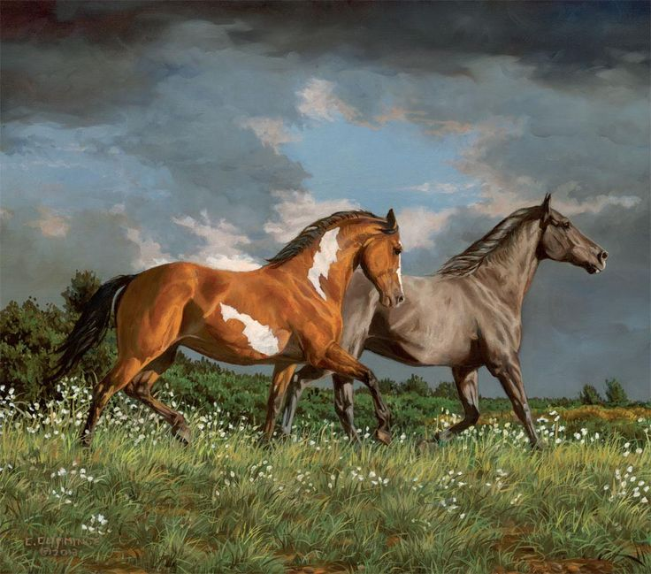 Lang March 2015 Desktop Wallpaper | Horses In The Mist