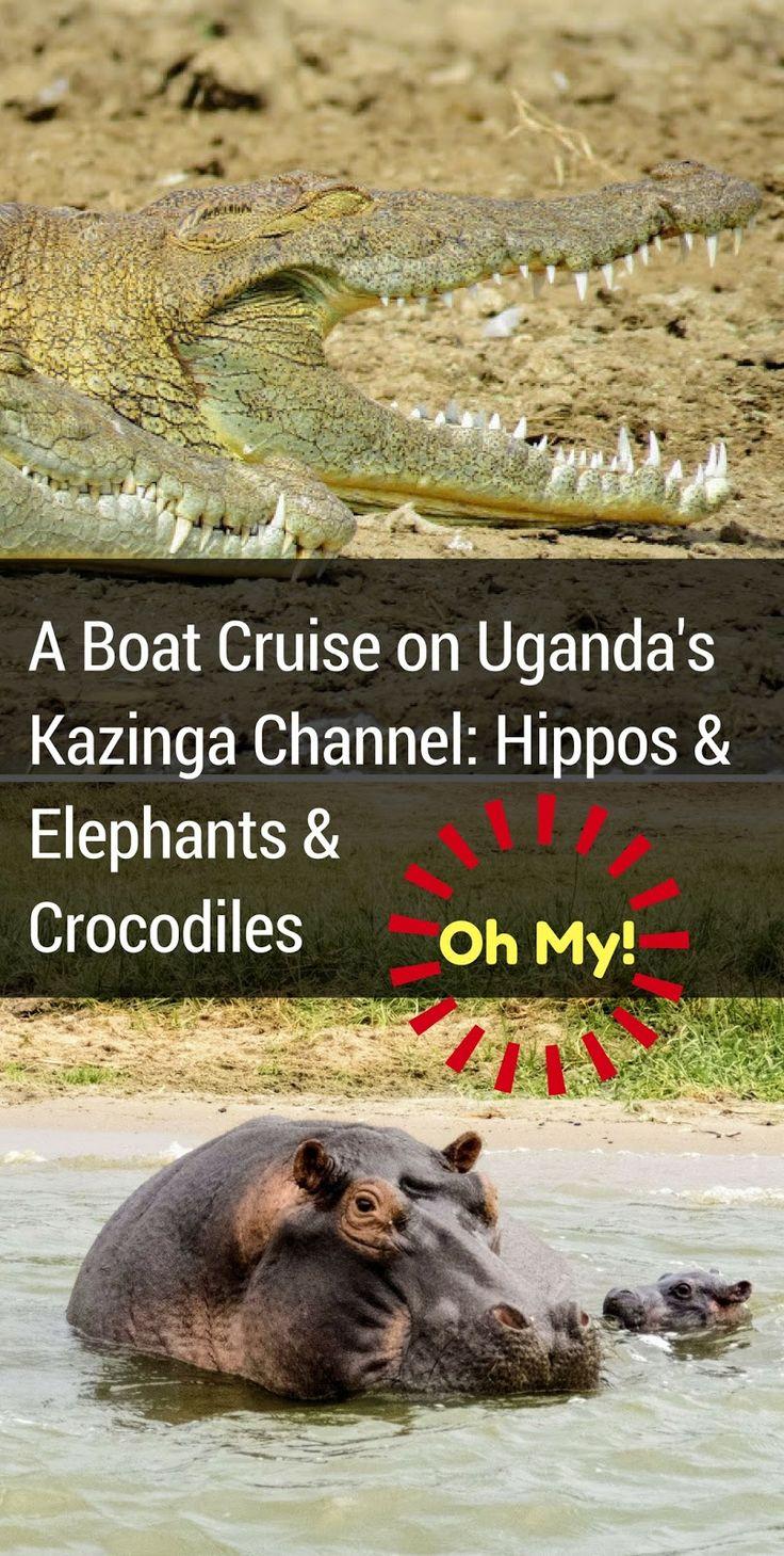 A Boat Cruise on Uganda's Kazinga Channel: Hippos and Elephants and Crocodiles, Oh My | Sidewalk Safari