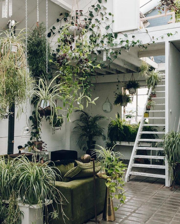 Green / Interior / Dreams / Space / Plantes / Home / Inspiration / Intérieur / Vert