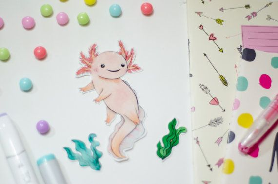 Cute axolotl sticker pack by Zindyconz on Etsy