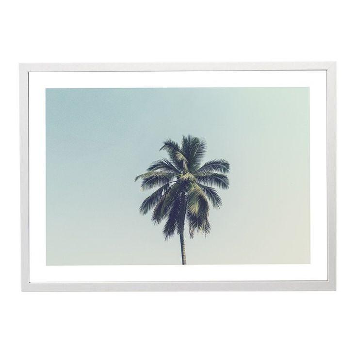 Print - Palm Skies