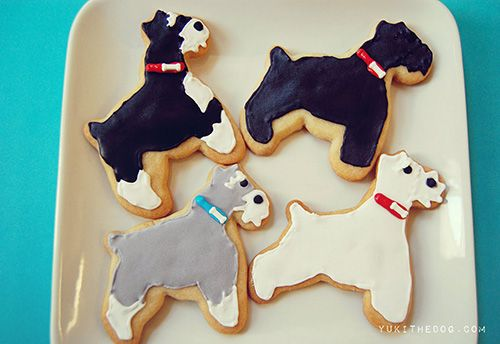 """I let out what can only be described as an """"epic squee"""" when I first saw these Schnauzer sugar cookies. I mean… THEY'RE SCHNAUZER SUGAR COOKIES, y'all! Amazing. Of course, you can make them in whatever breed (or shape!) your heart desires. Check out the recipe and tutorial over on Yuki the Dog."""