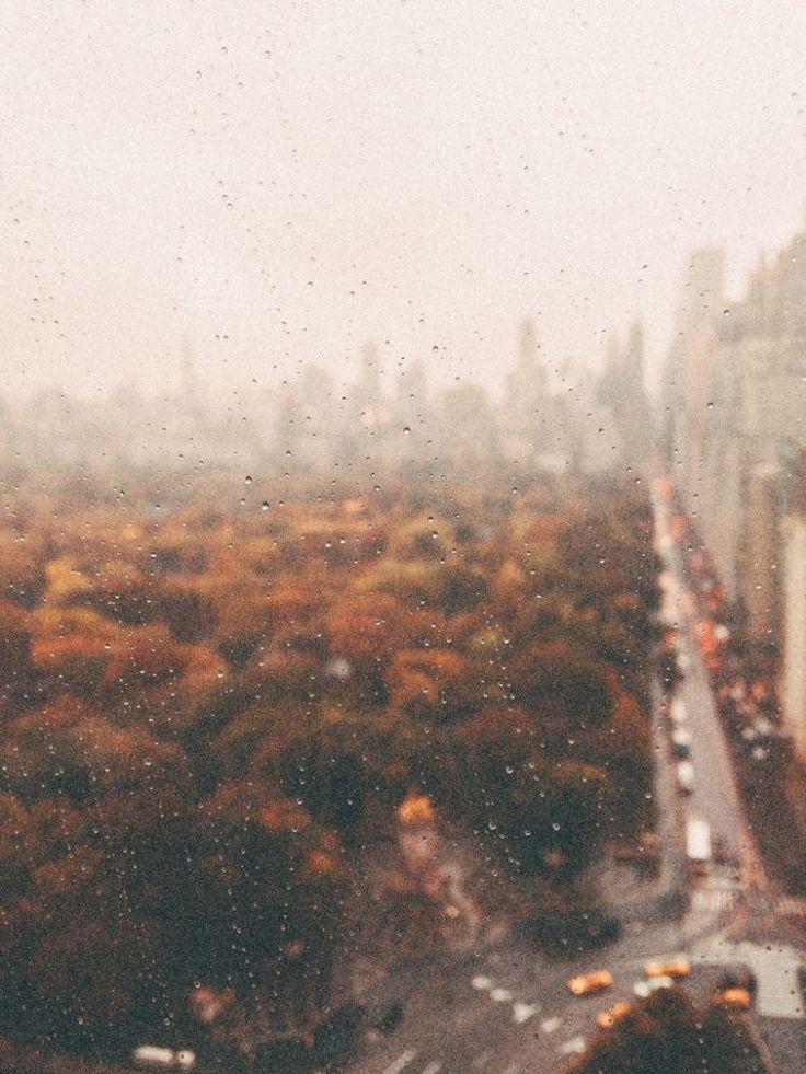 fall aesthetic background #pumpkinaesthetic #aestheticphotography