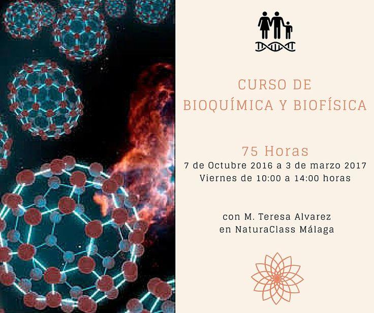 Completo curso de bioquímica y biofísica de 75 horas de duración en NaturaClass en Málaga (Programa de Graduado en Naturopatía)
