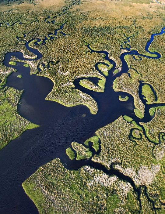 The Everglades, Florida