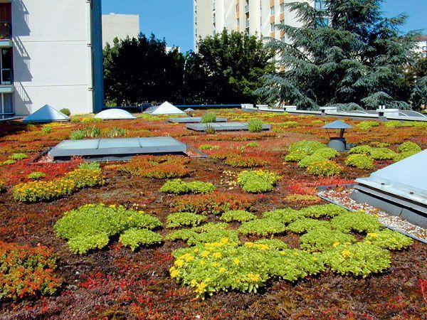 extenzivna stresna zahrada