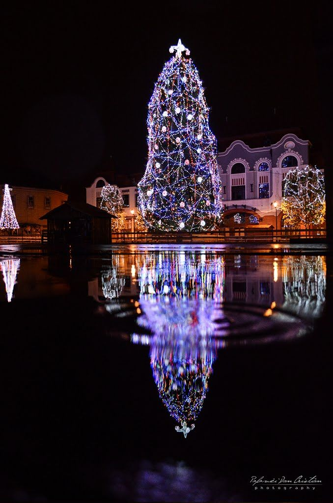 Christmas in Baia Mare, Romania