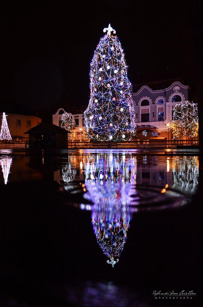 Christmas in Baia Mare, Romania