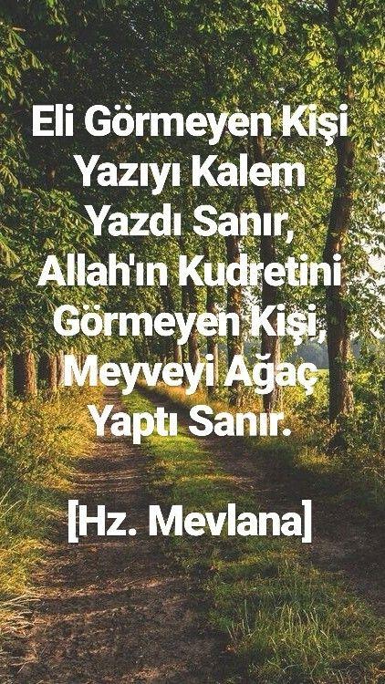 Eli Görmeyen Kişi Yazıyı Kalem Yazdı Sanır, Allah'ın Kudretini Görmeyen Kişi, Meyveyi Ağaç Yaptı Sanır.  #HzMevlana #ilmisuffa
