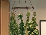 Herb Drying Rack - traditional - gardening tools - - by Williams-Sonoma