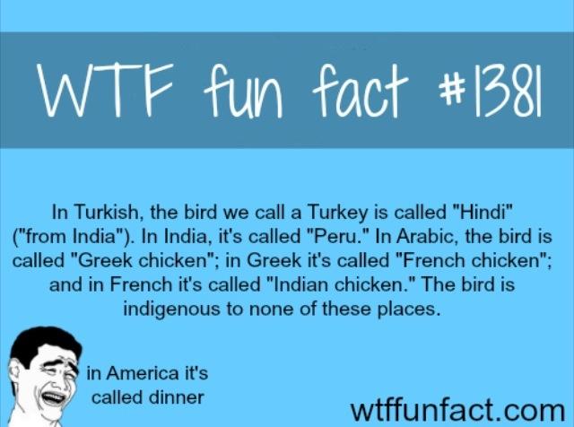 WTF Fun Fact#1381 Turkey