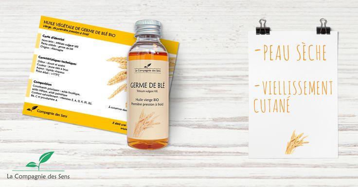 Le Germe de Blé est très bon pour la peau mais peut également faire du bien à vos cheveux ! #germedeble #cheveux #peau #beauté #HV