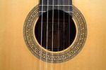The Classical Guitar Store ...since 1967 - David DAILY