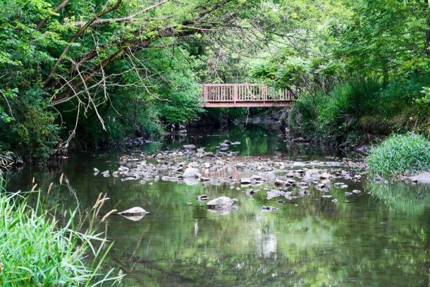 Taylor Creek Park: One of Toronto's Hidden Gems - Read more: http://www.fslocal.com/toronto/blog/2013-08/taylor-creek-park/
