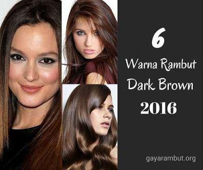 6 ide warna rambut dark brown 2016