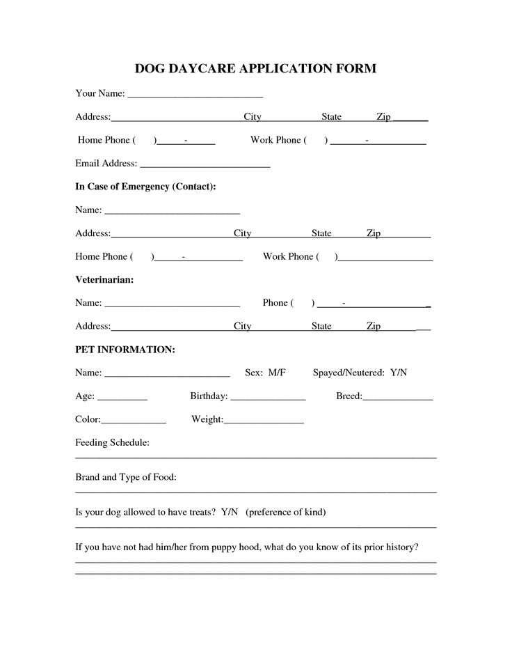 Best 25+ Application form ideas on Pinterest Job application - emergency contact forms