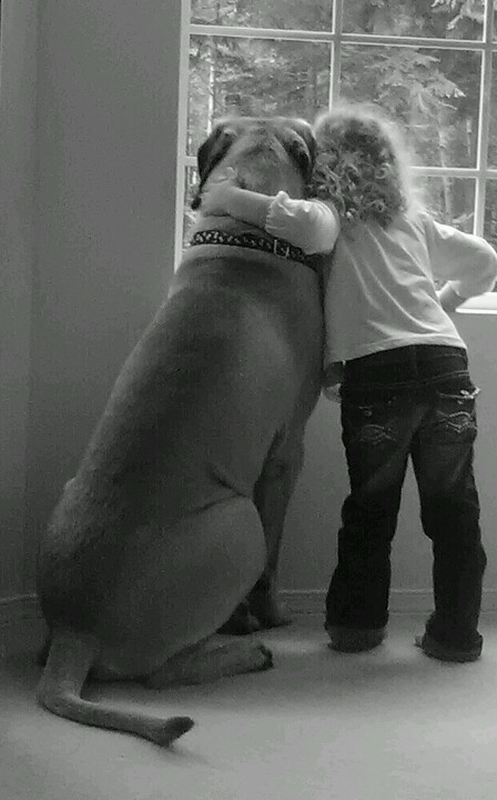 My Granddaughter & My 1 Yr old English Mastiff  <3