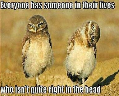 @Madeline Fox Fox Lowery I think this goes both ways!!!!! Lol