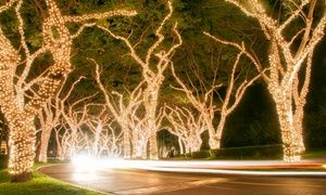Groupon - 12-Meter String of LED Solar Powered Holiday Lights. Groupon deal…