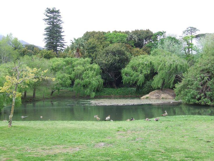 Maynardville Park