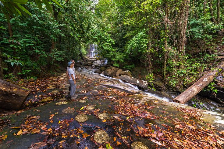 Is there anything better than getting back to nature and escaping the frenetic buzz of city life? Here are our top suggestions for where to go to see the very best of Malaysia's natural beauty: 1. Endau-Rompin National Park, Johor Endau-Rompin National Park contains some of the oldest rainforests in the world – the volcanic …