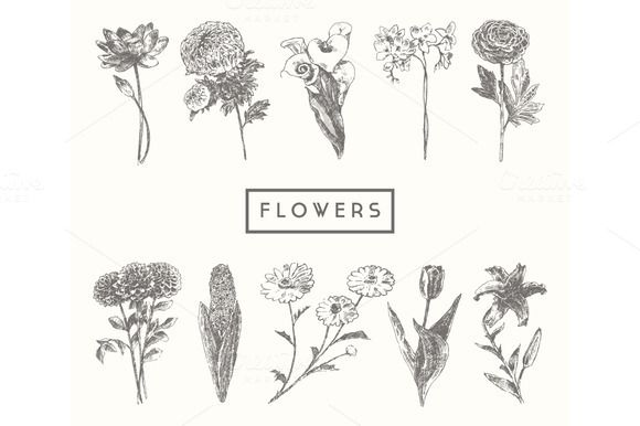 Trendy collection of flowers by grop on Creative Market