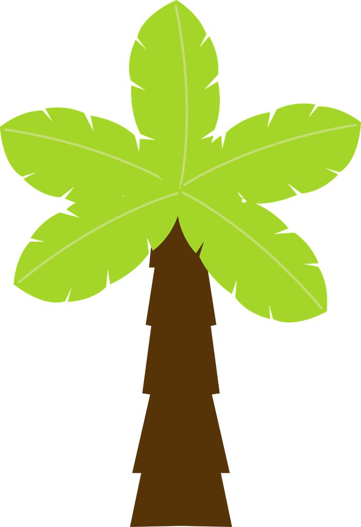 Palmeira                                                                                                                                                                                 Mais