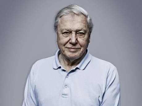 Sir David Attenborough: 'This awful summer? We've only ourselves to blame...' - Profiles - People - The Independent