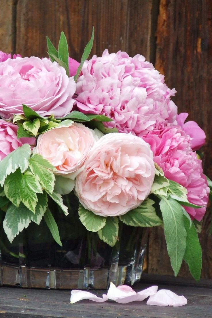 my french country flowers - peonies and roses 1