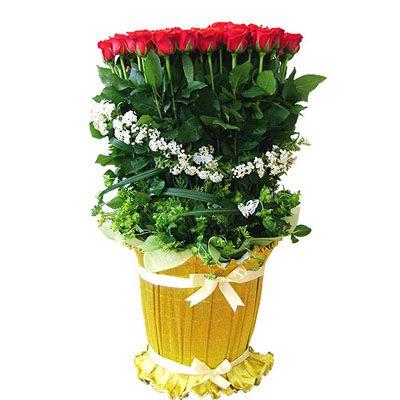 Покажите свою любовь общенациональной службы доставки цветов цветок Ою :: :: ~ ♡   Доставка цветов, скидка доставка цветов, быстрая доставка цветов доставка по всей стране цветок, цветы, венки, Восточный seoyangran, цветочные корзины, горшечные растения, листва