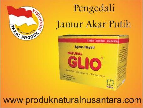 obat-pengendali-penyakit-jamur-akar-putih-organik-natural-glio-natural-nusantara