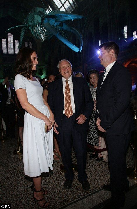 Kate sparkled as she chatted with Sir David Attenborough to unveil the new blue whale at the Natural History Museum