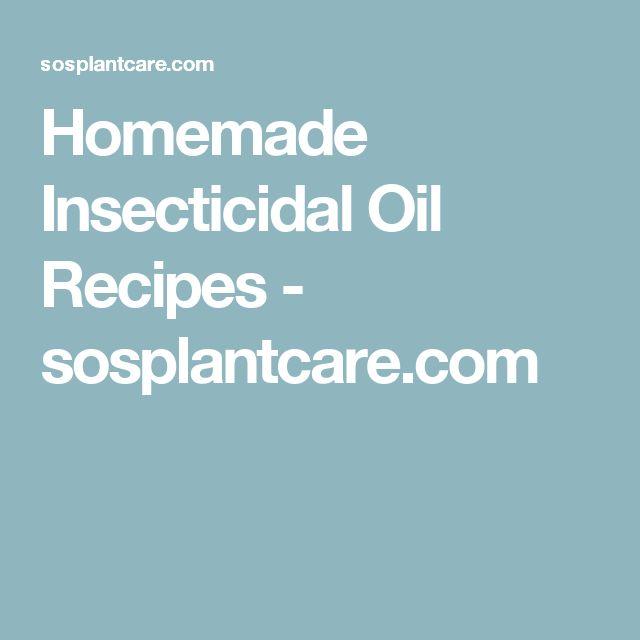 Homemade Insecticidal Oil Recipes - sosplantcare.com