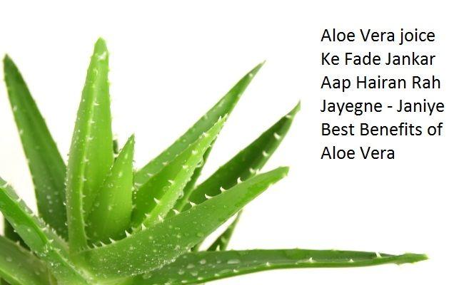Aaloe Vera Benefits in Hindi:Aloe Vera ko Gwarpatha bhi kha jata hai. Normal sa dikhne wala paudha kitna fayda pahuncha sakta hai shayad aapne soch bhi nhi hoga. Aayurveda meAloevera ke aise guno…