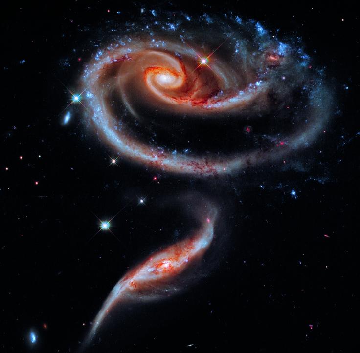 la galaxia de la rosa - Buscar con Google