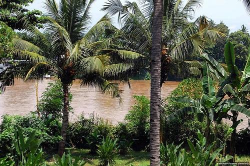 Nice Cagayán De Oro Hotel photos - http://philippinesmegatravel.com/nice-cagayan-de-oro-hotel-photos/