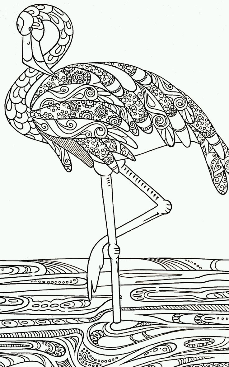 Flamingo color page black and white drawing outline for decorative painting idea struisvogel
