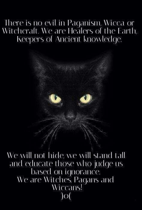 We will not hide...