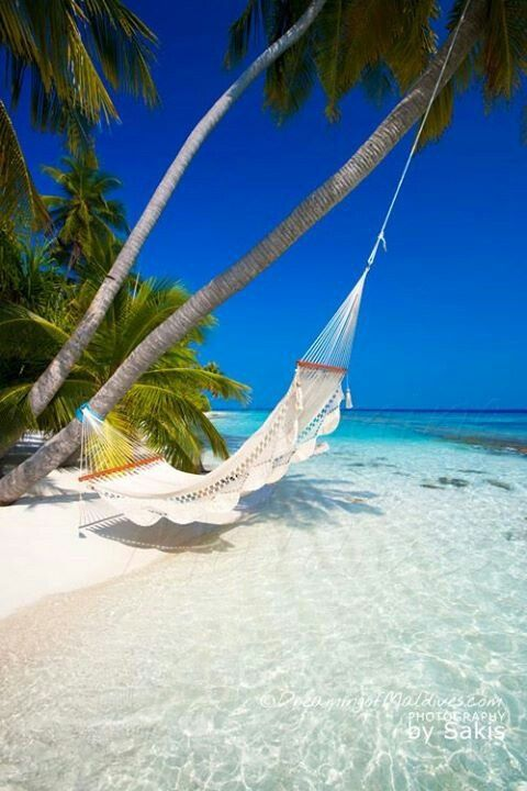 Yes it really is that beautiful! Punta Cana....relaxing honeymoon destination #travel #beach