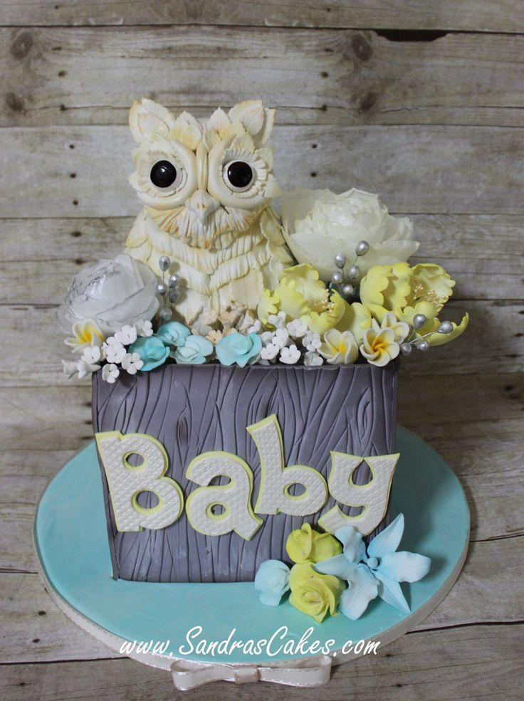 Owl Baby Shower: Sandra's Cakes, facebook