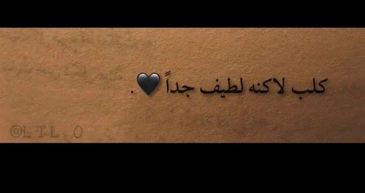 انا وقت امدح هههههههههههههههههههههههههههههههههههههههه Words Quotes Arabic Quotes Arabic Words