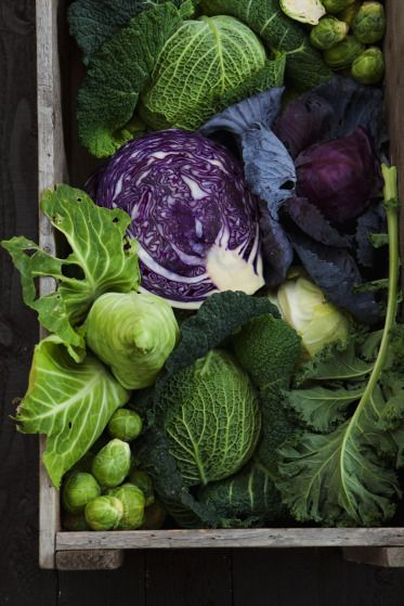 ♂ Eco life style Healthy eating organic food kale n cabbage