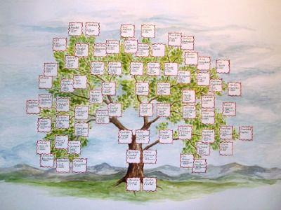 Kreslené stromy | Naše kořeny – Blanka Lednická