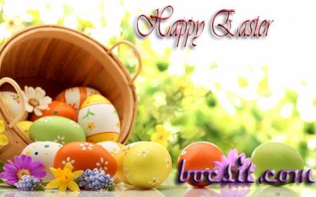 Happy Easter  http://www.bocsit.com