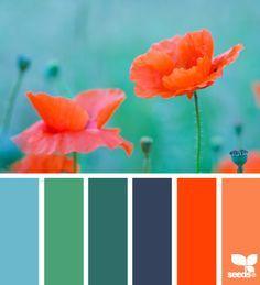 flora brights (design seeds)