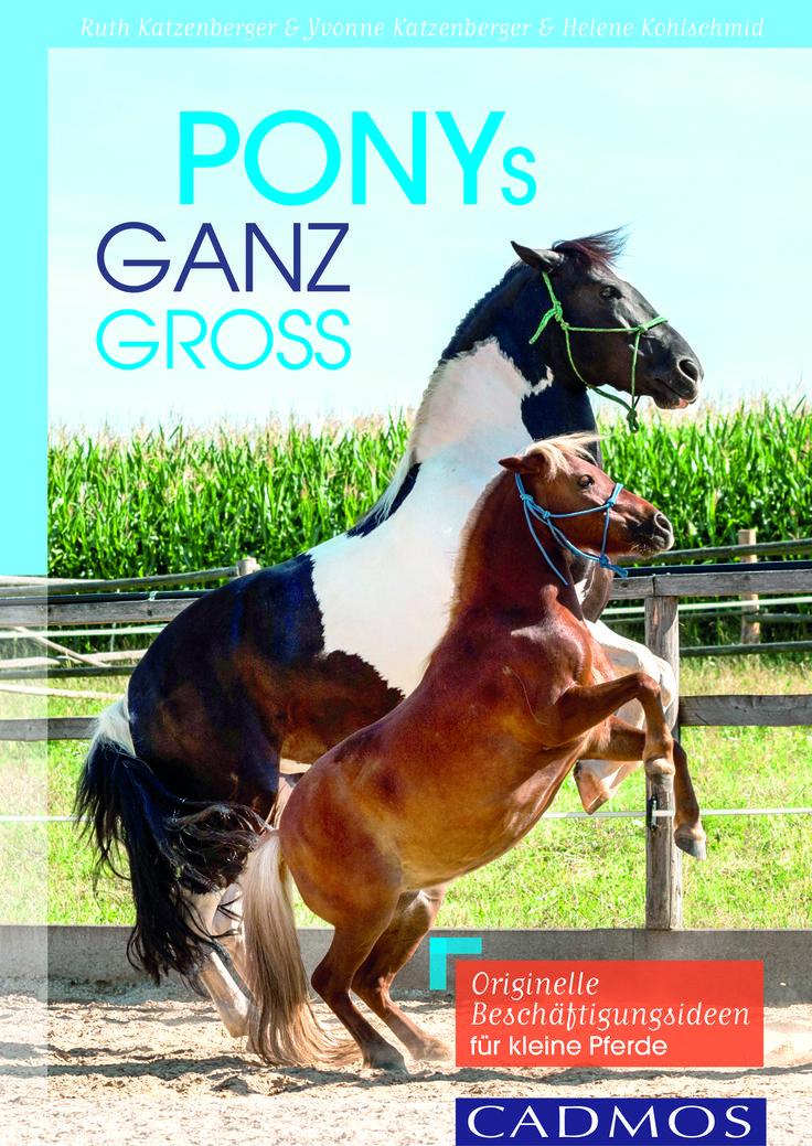 """Yeah! Unser Buch für alle Ponyfans! Frei nach dem Motto """"vom Rasenmäher zum Freizeitpartner"""" zeigen wir viele Beschäftigungsmöglichkeiten für (kleine) Ponys. Für alle, die großen Spaß mit kleinen Pferden haben wollen!"""