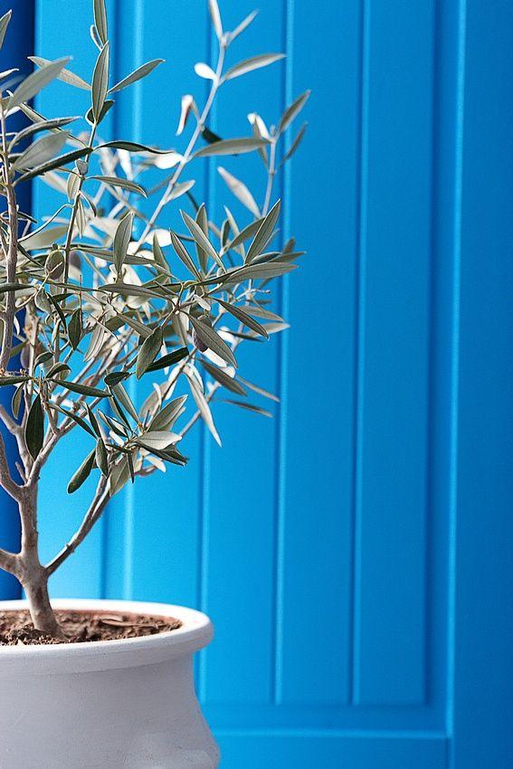 Greece…stunning shade of blue!