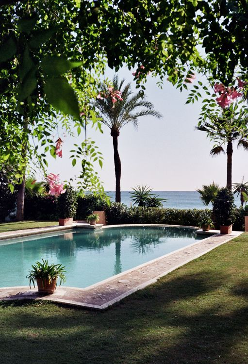 ocean view pool.So lovely!: Pools Area, Swim Pools, The Ocean, Palms Trees, Places, Backyard, Dreams Gardens, Ocean View, Back Yard