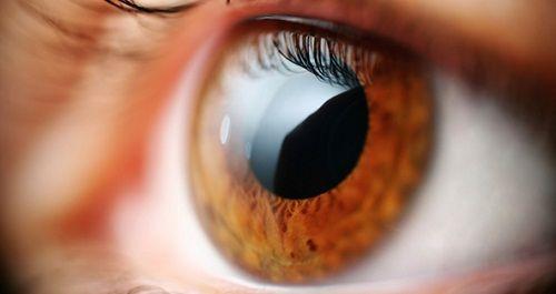 Exercices pour lutter contre la presbytie ou la fatigue de la vue - Améliore ta Santé