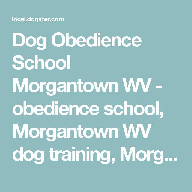 Dog Obedience School Morgantown WV - obedience school, Morgantown WV dog training, Morgantown WV Behavioral problems, Morgantown WV dog products, Morgantown WV pet supplies